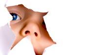 Няня,  Сиделка,  Домработница,  Уборка - экспресс услуги домашнего персонала